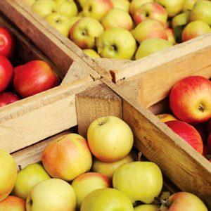 Produce & Prepared Foods